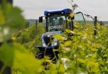 New Holland w winoroślach