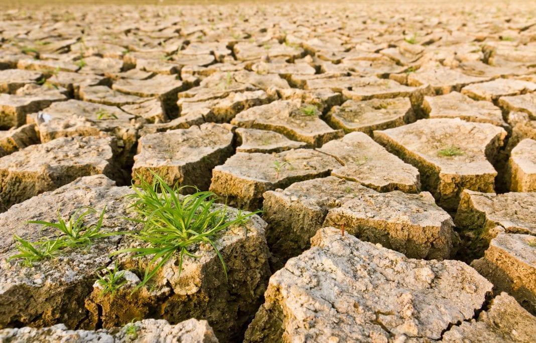 """III Konferencjęa Naukowo-Techniczna ,,Jak ratować polskie rolnictwo przedskutkami suszy?"""""""