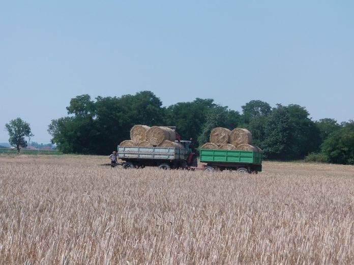 Ciągnik z przyczepą na polu