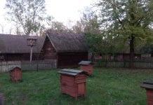 Program odnowy wsi województwa podlaskiego