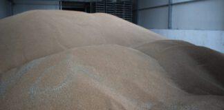 Ceny produktów rolnych w lutym wg danych GUS