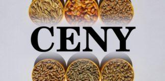 Wieści ze zbożowych elewatorów – pszenica tanieje