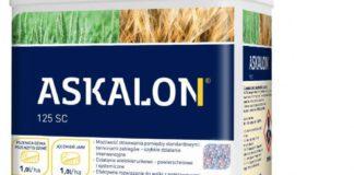 ASKALON® 125 SC - efektywne rozwiązanie do walki z podstawowymi chorobami zbóż