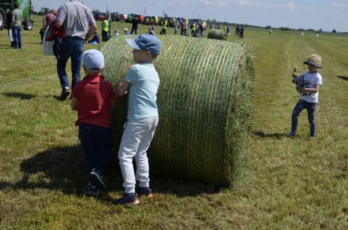 Dzieci rolników ubezpieczone od następstw nieszczęśliwych wypadków