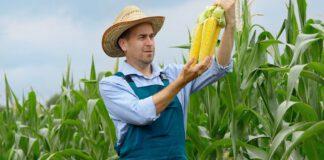 CIECH rozwija swój biznes AGRO w Rumunii