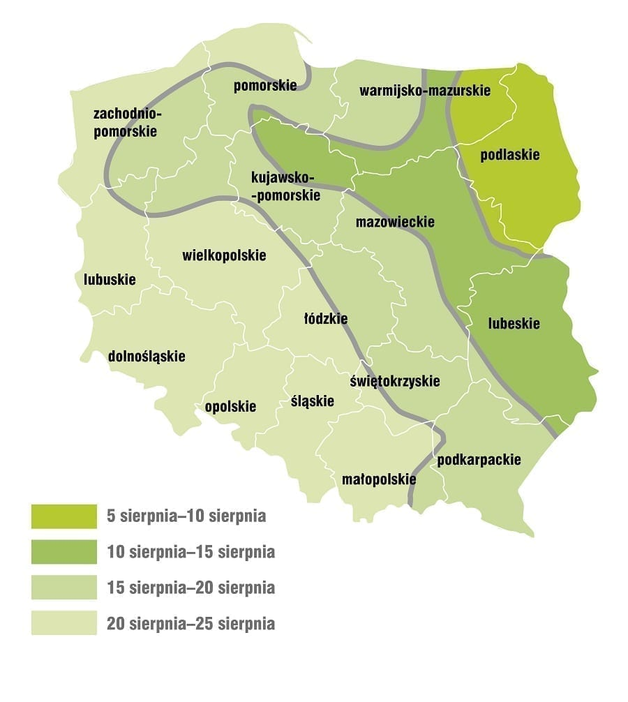 Optymalne terminy siewu rzepaku w Polsce - mapka