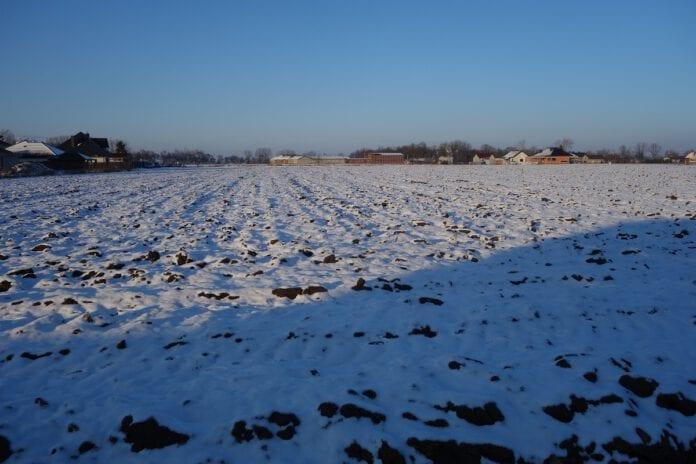 Uprawy rolne zimą